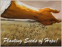 A seeds of hope