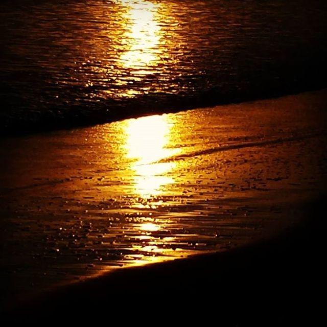 golden-light-on-shore