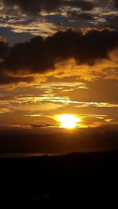 brilliant dawn